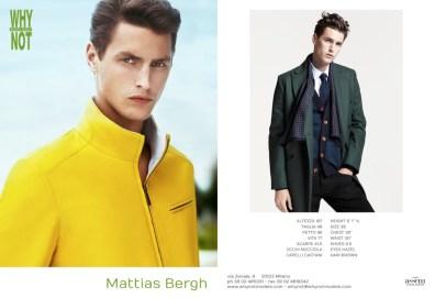 Mattias_Bergh