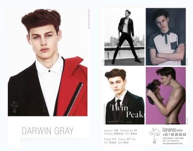 darwin_gray