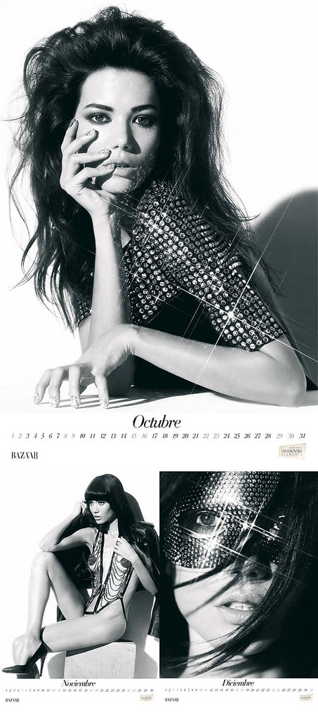 Harpers Bazaar Espana 2011 Calendar