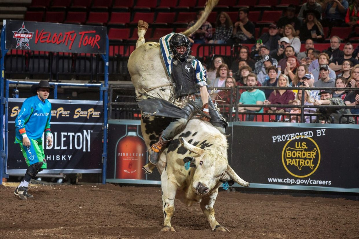 new television series pbr