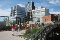 Ecofication of urban areas is now essential. Pictured: New York's High Line.