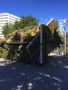 Christchurch . Christchurch has  become the uncontested capital of
