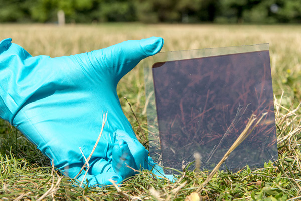 A perovskite solar cell