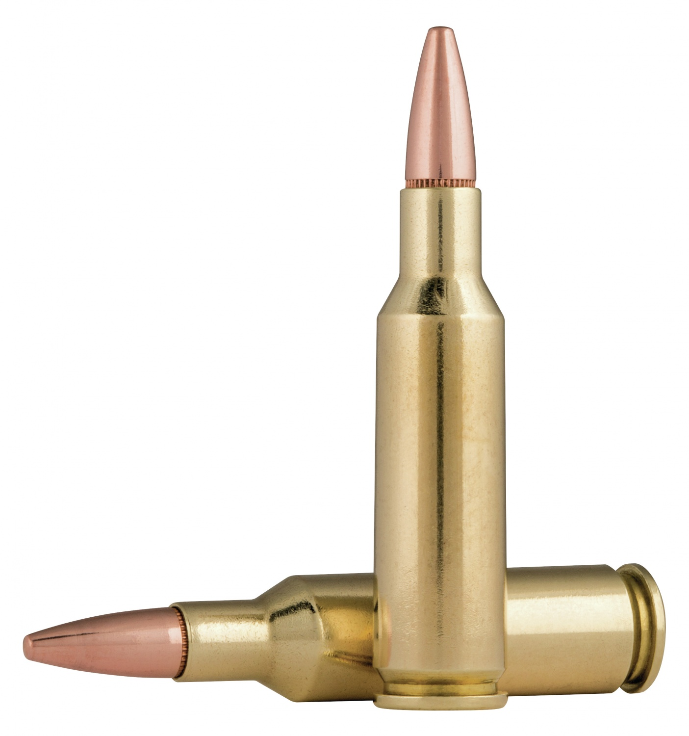 hight resolution of  the 224 caliber as a medium game taker due to lack of heavyweight hunting bullets and the 100gr fusion seems like more than enough to fill that niche