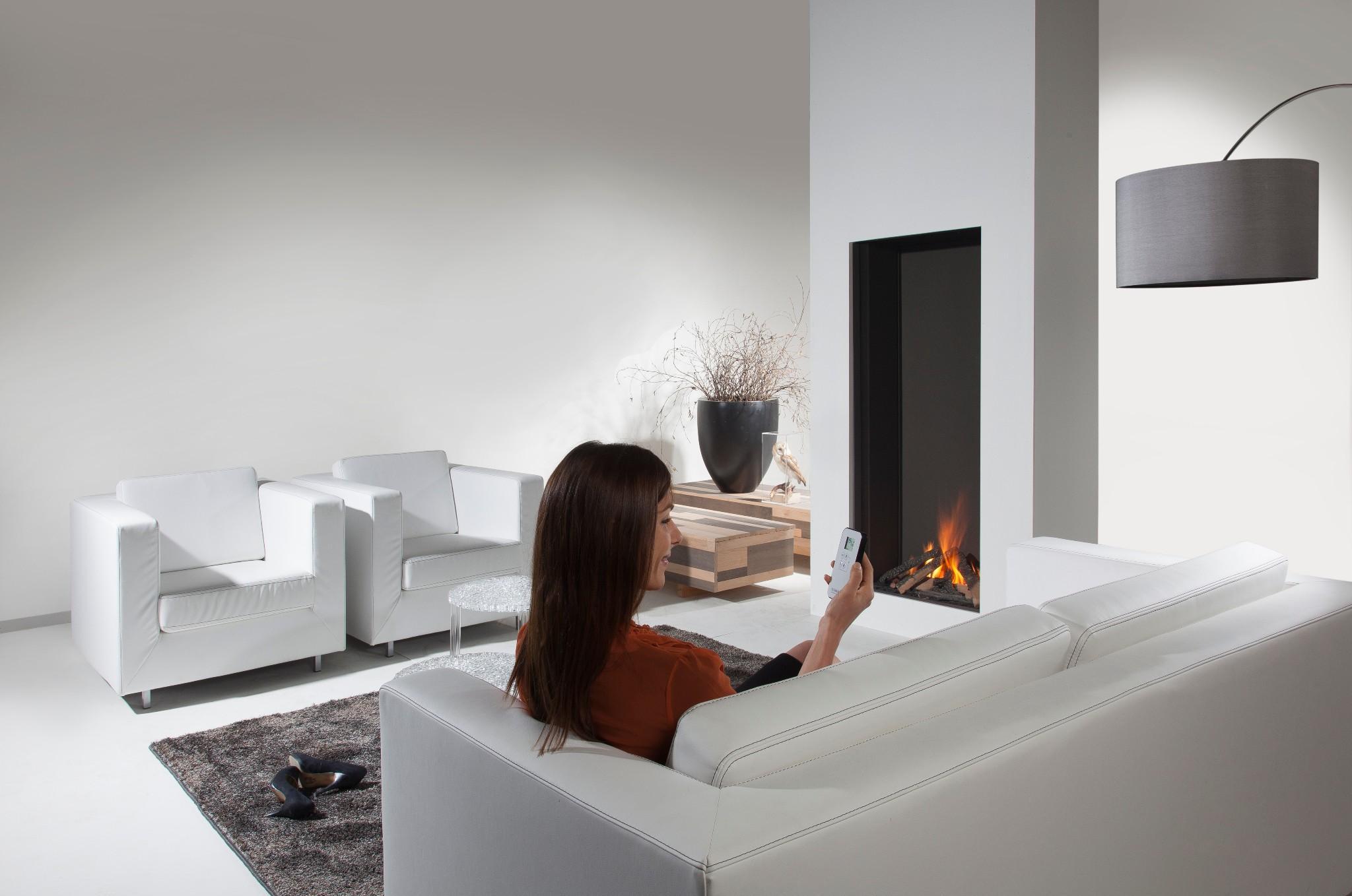 Element 4 Sky Gas Fireplace