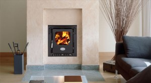 Firebird wood burning Dry inset stove 5kw
