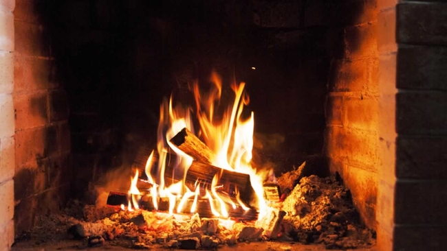 wood logs the fireplace