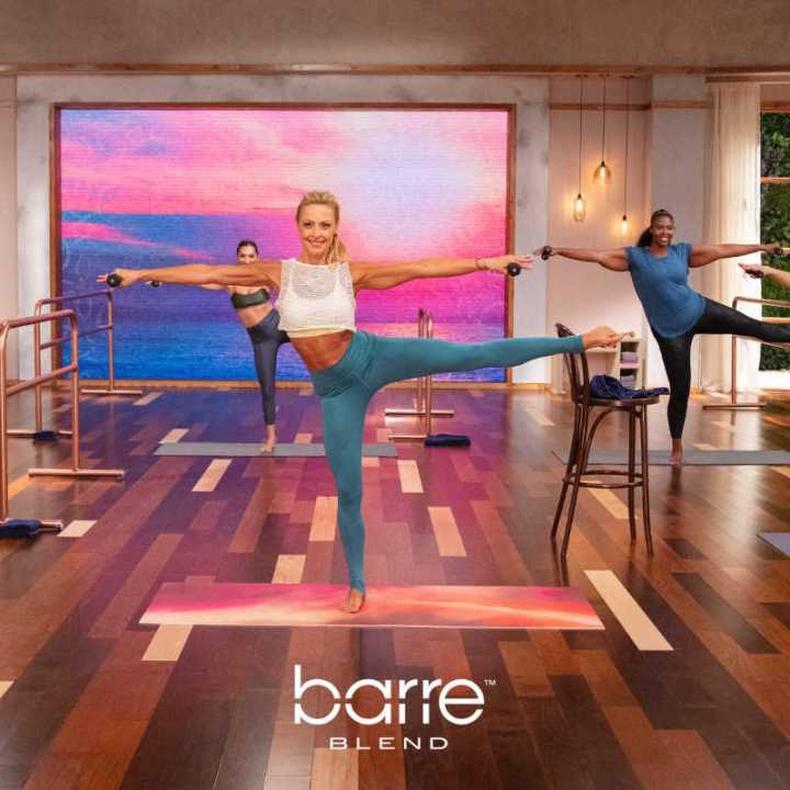 Get a FREE Barre Sample Workout! | The Fit Club Network