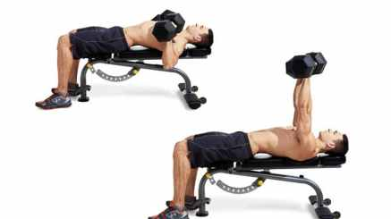 dumbbell-bench-press-chest-weights
