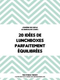 ebook thefitnesstheory lunchbox