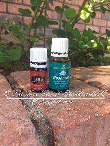 essential oils, DIY dandruff shampoo, toxin free, Young Living oils