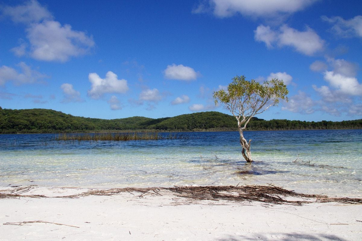 From Brisbane to Fraser Island (Day 1)