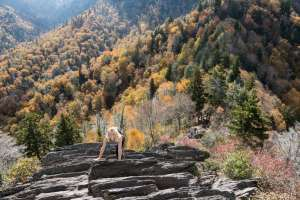 Tennessee's Chimney Tops Trail