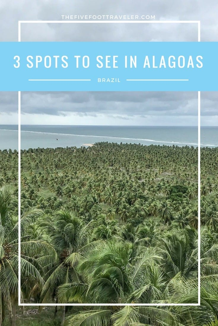 Alagoas is one of Brazil's 27 states located in the Northeast of the country and is particularly known for its stunning beaches. Check yourself into the Flor de Lis Exclusive Hotel, make Maceió your home base and take off to explore the surrounding areas! Read more at www.thefivefoottraveler.com