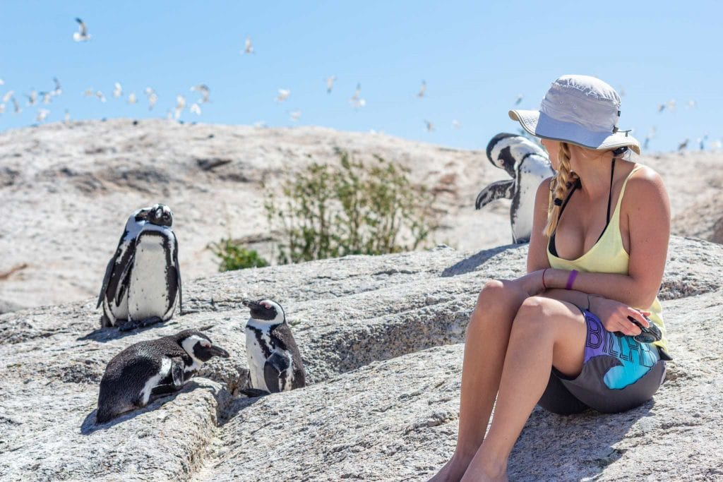 girls sits on rocks with four penguins on her south africa vacation