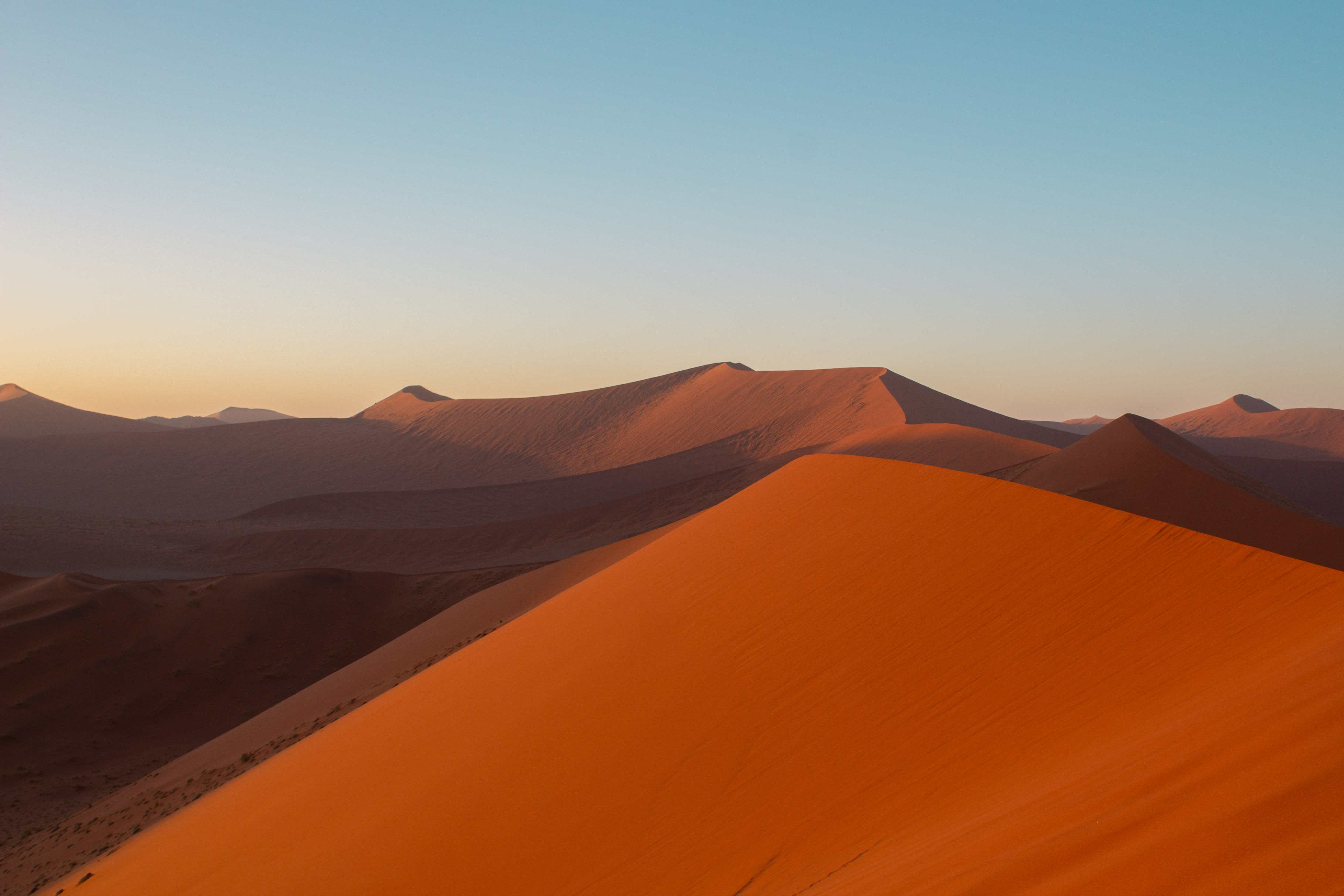 dune 45 is one of the highest climbable sand dunes in the world. this picture was taken right after sunrise as the sun is reflecting off the orange sand dunes.