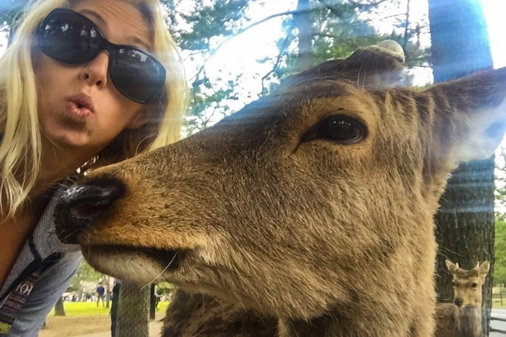 girl takes a selfie with a deer in nara - things to do in japan