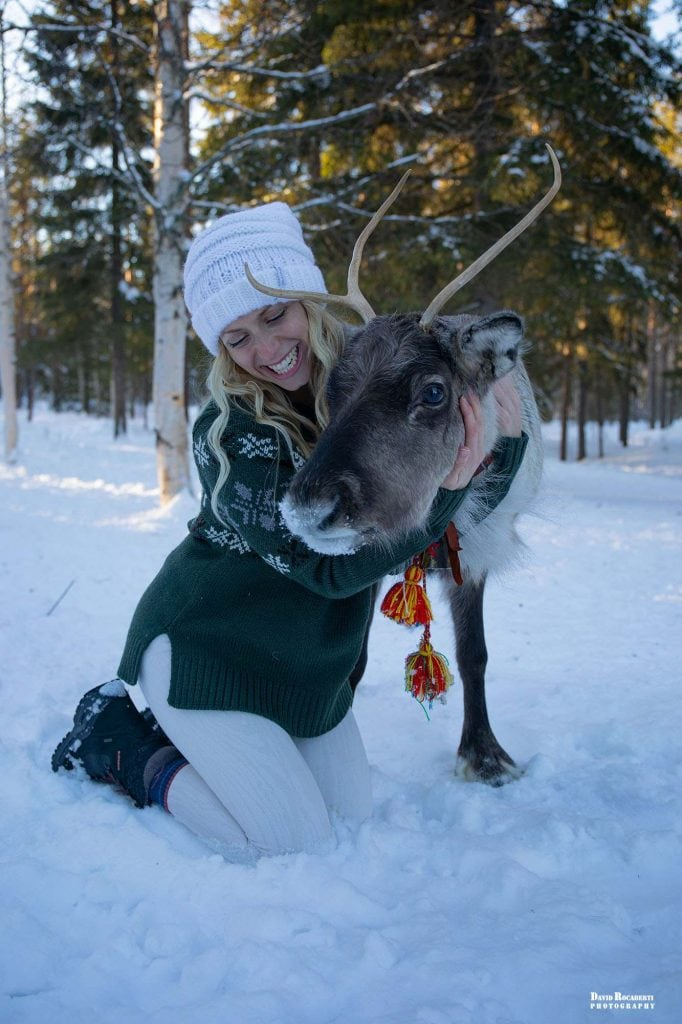 a girl petting a reindeer in lapland sweden