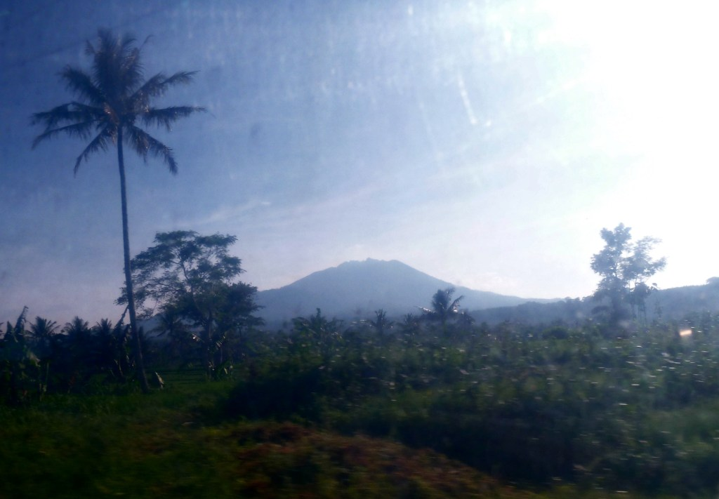 Volcanoes, palm trees, and paddy fields