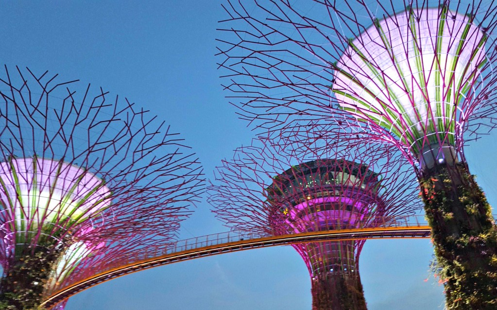 More Supertrees! Just because.