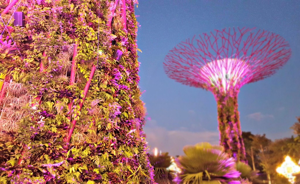 supertrees-gardens-by-the-bay-singapore-3