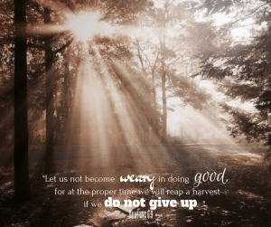 """Let us not become weary in doing good, for at the proper time we will reap a harvest if we do not give up.""-2"