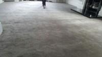 Luxury Carpet - Carpet Vidalondon