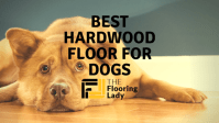 Best Hardwood Floors For Dogs - Reviews and Comparisons ...