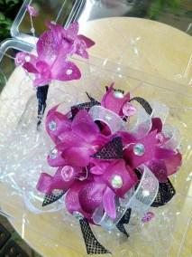 Fuchsia Dendrobium Orchids The Flower Diva