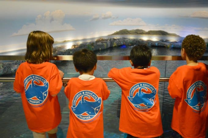 Ripley's Aquarium of Canada Summer Day Camp and Birthday Parties