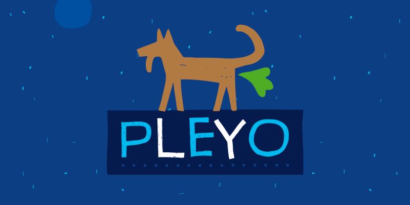 Pleyo [1 Font] | The Fonts Master
