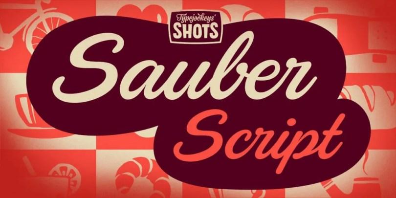 Sauber Script [1 Font] | The Fonts Master