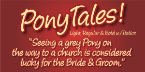 Pony Tale Pro