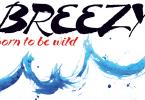 Breezy [1 Font] | The Fonts Master
