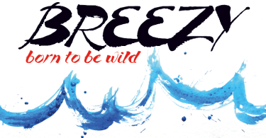 Breezy [1 Font] | The Fonts Master