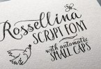 Rossellina [1 Font] | The Fonts Master