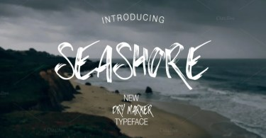 Seashore [1 Font] | The Fonts Master