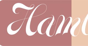 Glenda [2 Fonts] | The Fonts Master