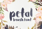 Petal - Brush Font [1 Font] | The Fonts Master