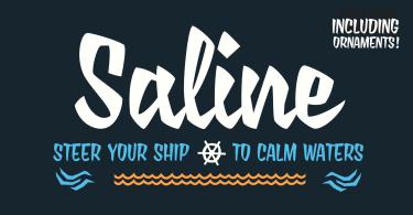 Saline [1 Font] | The Fonts Master