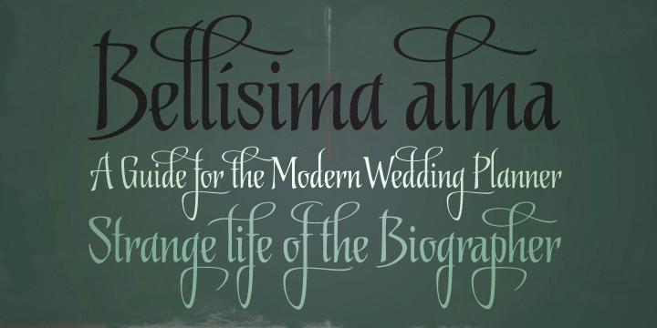 Biographer [1 Font] | The Fonts Master