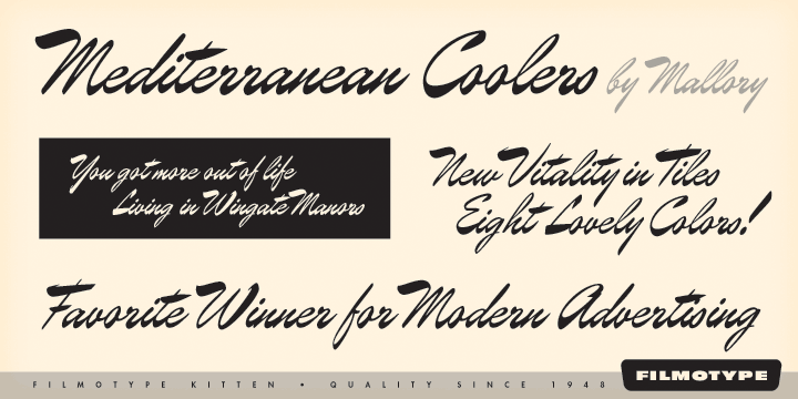 Filmotype Kitten [1 Font]   The Fonts Master