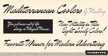 Filmotype Kitten [1 Font] | The Fonts Master
