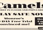 Filmotype Rose [1 Font] | The Fonts Master