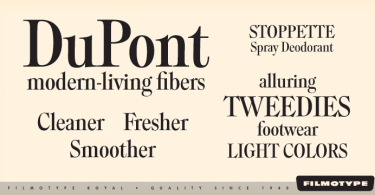 Filmotype Royal [5 Fonts] | The Fonts Master