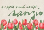 Sanzio [1 Font] | The Fonts Master