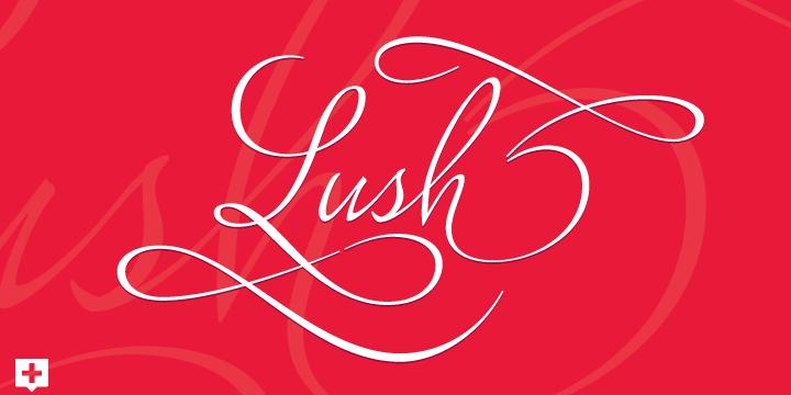 Lush Script [1 Font]   The Fonts Master