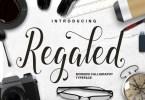 Regaled Script [1 Font] | The Fonts Master