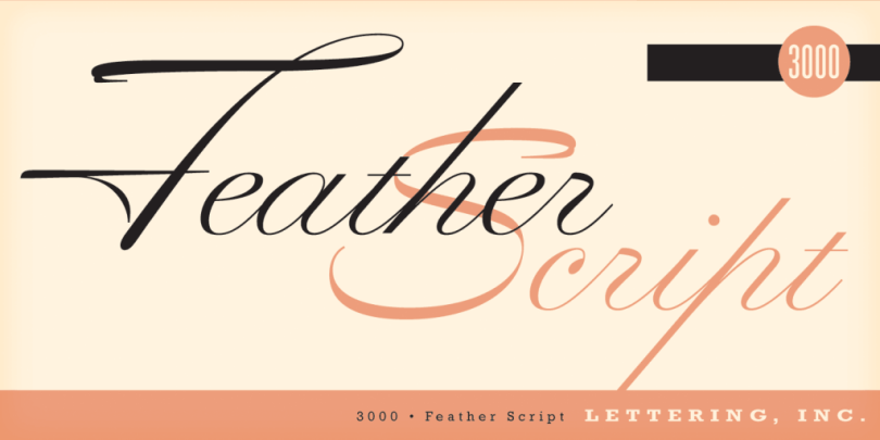 Feather Script [1 Font] | The Fonts Master