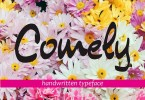 Comely [1 Font] | The Fonts Master
